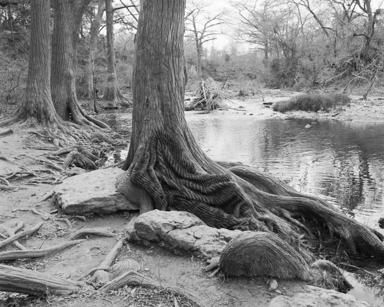 brister-reclining_cypress-300dpi