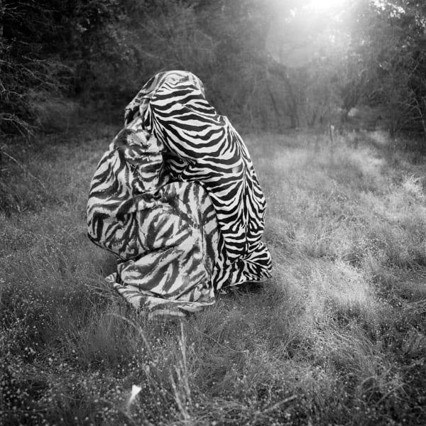 brister-zebraduet-300dpi1