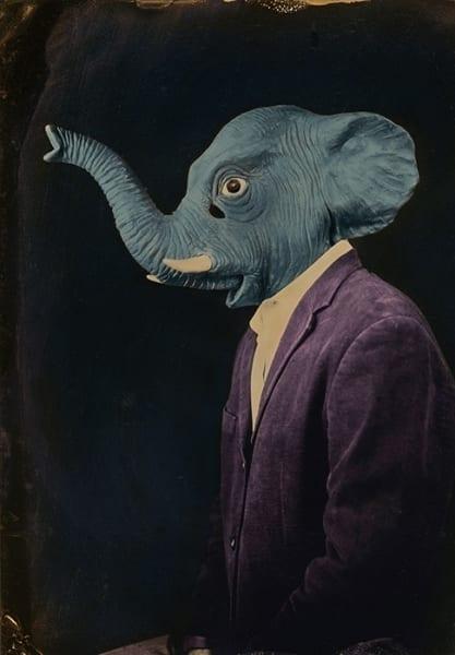 burlton_laura_mr-elephant-forgets