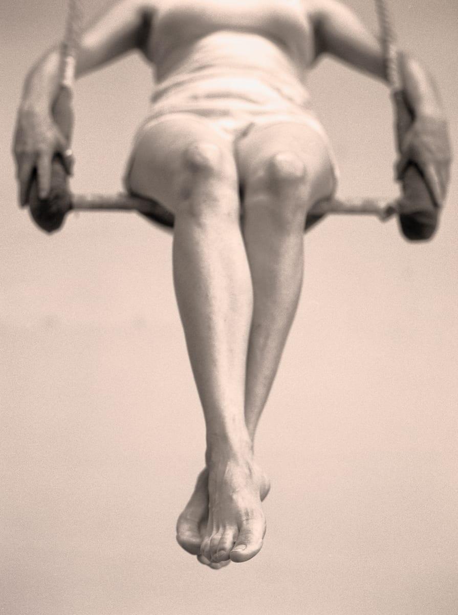 trapeze-artist_shelley-calton-nelson-small