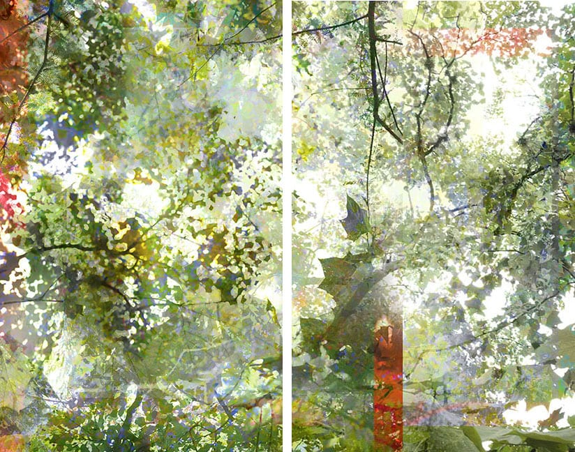 chiles_on-water-diptych-36-x-48-inches