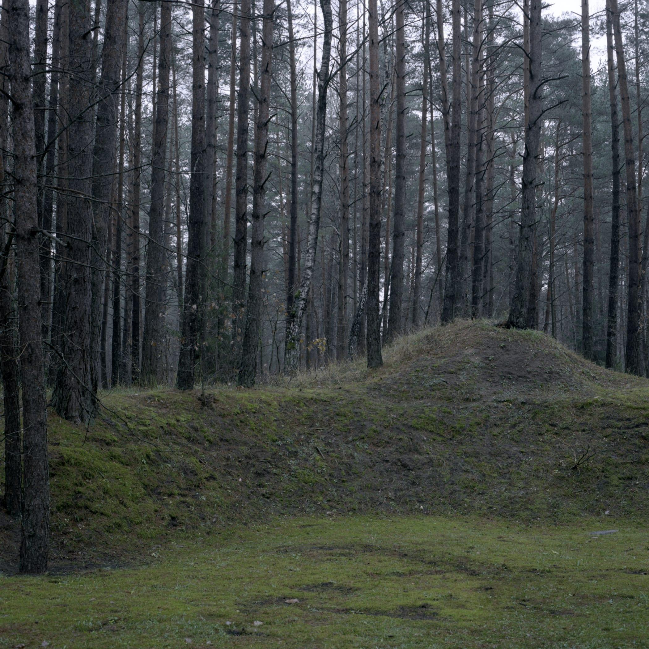 webeck_landscape-history_ponar-forest